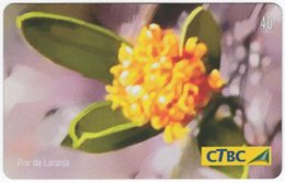 BRASIL K-012 Magnetic CTBC - Plant, Flower - Used - Brésil