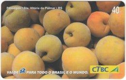 BRASIL K-062 Magnetic CTBC - Plant, Vegetable, Fruit - Used - Brésil