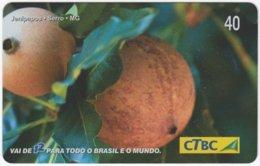 BRASIL K-071 Magnetic CTBC - Plant, Vegetable, Fruit - Used - Brésil