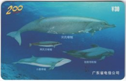 CHINA E-115 Prepaid ChinaTelecom - Painting, Animal, Sea Life, Whale - Used - China