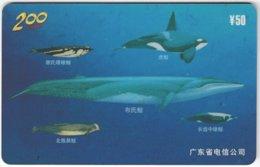 CHINA E-117 Prepaid ChinaTelecom - Painting, Animal, Sea Life, Whale - Used - China