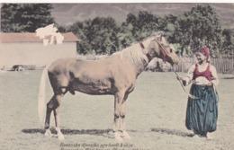 BOSNISCHES MADCHEN EIN PFERD VORTUHREND. CROATIE POSTALE CPA CIRCA 1910's NON CIRCULEE -LILHU - Croacia