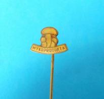 MUSHROOMS - Czech Old Pin Badge Champignon Champiñón Hongo Pilz Fungo Mushroom Champignons Hongos Pilze Funghi - Pins