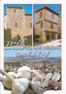 63 BILLOM - CAPITALE DE L'AIL / CITE MEDIEVALE - MULTIVUES - Otros Municipios