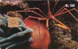 Venezuela, CAN2-0028-2a, Cangrejo Flecha, Crab, 2 Scans.   Printed Moreno Logo And Transparent Moreno Logo - Venezuela