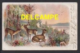 DF / ANIMAUX / DESSIN / CERF ET BICHES / DE GY POUR GRAY (70) MARS 1904 - Animali