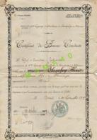 MILITARIA - CERTIFICAT DE BONNE CONDUITE DE 1919 - ALGERIE - ORAN - 2 GROUPE ARTILLERIE CAMPAGNE D'AFRIQUE - Documents