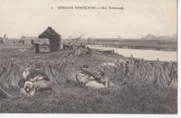 DOUANE FRANCAISE: Une Embuscade - Dogana