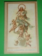 Maria ASSUNTA In Cielo - Santino Riproduzione - Santini
