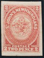 Terranova. MH *Yv 14. 1862. 2 P Carmín. MAGNIFICO. Yvert 2012: 300 Euros. - Newfoundland