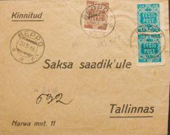 Estonia. Sobre Yv 2(2), 3. 1919. 15 K Azul Verde, Pareja Y 35 K Castaño. BEPPO (VORU) A TALLIN. Al Dorso Llegada. MAGNIF - Estonia