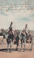 ADEN - ARAB TRAVELTERS. YEMEN. POSTALE CPA CIRCULEE 1914 A BUDAPEST -LILHU - Yemen