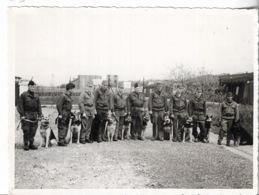 Militaria - Militaires En Tenues Pour Un Concours De Chiens - Avril 1964 - - Divise