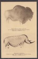 100298/ LES EYZIES, Bison Peint En Rouge Et Noir Et Rhinocéros Tichorhinus Dessiné En Rouge - Sonstige Gemeinden