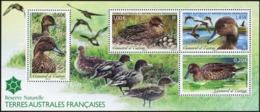 FRENCH ANTARCTIC TERRITORIES TAAF FSAT 2013 Eaton's Pintail Birds Ducks Animals Fauna MNH - Birds