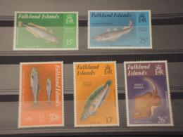 FALKLAND - 1981 FAUNA MARINA   5 VALORI -  NUOVI(++) - Falkland Islands