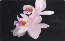 Venezuela, CAN2-0132b. Cattleya Mossiae Hooker (3/12), Orchid, 2 Scans. GEM1A (Symmetric Black) - Venezuela