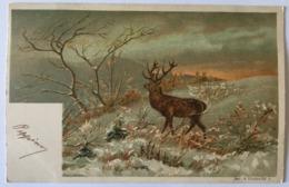 V 10661 Cervo - Animali