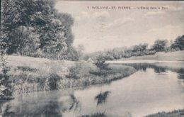 Woluwe-St.Pierre L'Etang Dans Le Parc - Woluwe-St-Pierre - St-Pieters-Woluwe