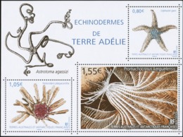 FRENCH ANTARCTIC TERRITORIES TAAF FSAT 2018 Echinoderms Of Adelie Land Animals Fauna MNH - Meereswelt