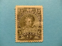 NEWFOUNDLAND TERRANOVA  TERRE NEUVE 1897 -1901 Prince Edouard Yvert  63 ( * ) - 1865-1902