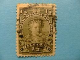 NEWFOUNDLAND TERRANOVA  TERRE NEUVE 1897 -1901 Prince Edouard Yvert  63 º FU - 1865-1902