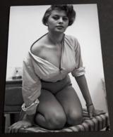 SOPHIA LOREN # Sexy Pin-Up Girl Portrait # Großes Star-Photo, Ca. 13 X 18 Cm # [19-4551] - Fotos