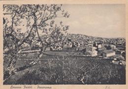 LERCARA FRIDDI-PALERMO-PANORAMA-CARTOLINA VIAGGIATA IL 3-8-1957 - Palermo
