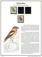 FEUILLE DAVO EN COULEUR POUR BUZIN COB 2189, GROS - BEC . (JE37) - 1985-.. Birds (Buzin)