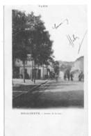 81 TARN Les Rails Du Chemin De Fer Sur L'Avenue De La Gare De BRIATEXTE Carte Précurseur - Autres Communes