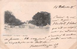 MONTPELLIER 1898  17-0298 - Montpellier