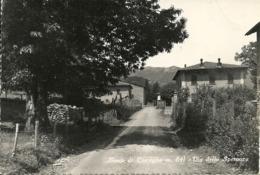 Bosco Di Corniglio Fraz. Di Corniglio (Parma) Via Della Speranza - Parma