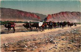 CPA Lehnert & Landrock 914 Une Caravane De Nomades TUNISIE (873799) - Tunisia