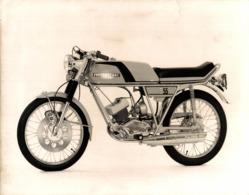 Motobecane D55 +-24cm X 18cm  Moto MOTOCROSS MOTORCYCLE Douglas J Jackson Archive Of Motorcycles - Fotos
