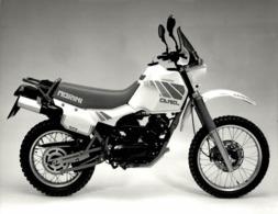 Morini 501 +-24cm X 18cm  Moto MOTOCROSS MOTORCYCLE Douglas J Jackson Archive Of Motorcycles - Photographs