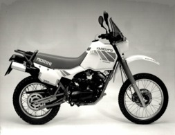 Morini 350 Kanguro +-24cm X 18cm  Moto MOTOCROSS MOTORCYCLE Douglas J Jackson Archive Of Motorcycles - Photographs