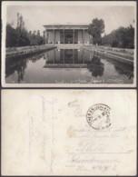 Perse - Carte Photo  (VG) DC4704 - Iran
