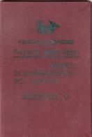 TRENO FERROVIA TRAIN RAILWAY - TESSERA PER FAMIGLIE 1929 - Abonnements Hebdomadaires & Mensuels