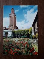L22/879 Institut Musulman . Mosquée De Paris . Minaret Et Jardin D'entrée - Islam