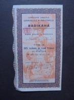 AFRIQUE,COTE D'IVOIRE, BADIKAHA 1927 - CIE AGRICOLE COMMERCIALE ET INDUSTRIELLE - TITRE DE 10 ACTIONS 100 FRS CFA, DECO - Shareholdings