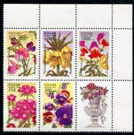 RUSSIA 1996 Garden Flowers MNH / **.  Michel 480-84 - 1992-.... Federazione