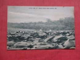 Delaware >  Lotus Bed  St Jones River   Near Dover  Ref 3716 - Dover