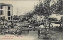 66  Banyuls Sur Merbanyuls-trilles La Mise En Gare - Banyuls Sur Mer