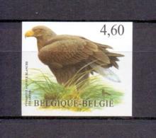 3871 Zeearend Buzin  Ongetand 2009 - Belgium