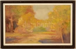 Szőnyi Jenő (1902-?): Tisztás. Olaj, Farost, Jelzett, Keretben, 30×50 Cm - Non Classificati