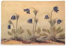 Wagner Jelzéssel: Harangvirágok. Akvarell, Papír, 25×36 Cm - Non Classificati