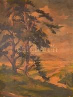 Jelzés Nélkül: Kilátás A Dombtetőről. Olaj, Vászon (festék Hibákkal), Keretben, 70×53 Cm - Non Classificati