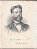 Cca 1867 Marastoni József: Rudolph Von Vivenot Klimatológiaprofesszor Portréja, Litográfia, Papír, 27×21 Cm - Incisioni