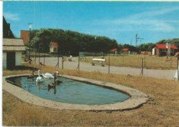 754. Wenduine - Dierentuin - Wenduine