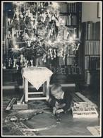 Kisfiú Játékvonattal A Karácsonyfa Alatt, Fotó, 23×17 Cm - Altre Collezioni